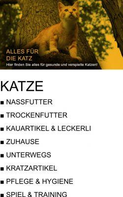 BU_Katze